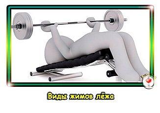 vidy-zhimov-lezha-pr
