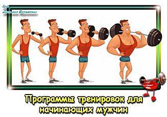 Programma-trenirovok-v-zale-dlia-nachinaiushchikh-muzhchin-pr