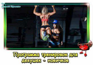 programma-trenirovok-v-zale-dlia-nachinaiushchikh-devushek-pr
