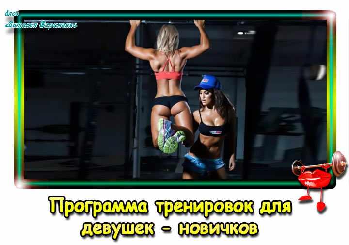 programma-trenirovok-v-zale-dlia-nachinaiushchikh-devushek