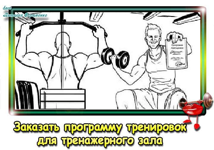 zakazat-programmu-trenirovok-2